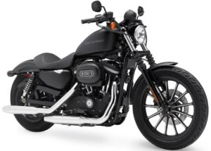 harley-iron-883-photo