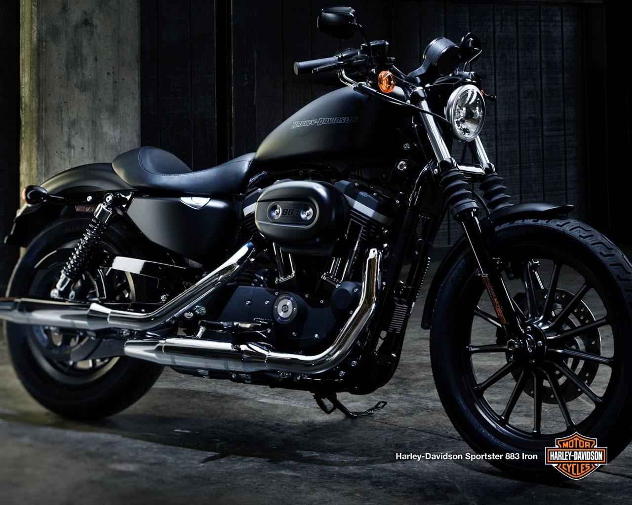 Harley Davidson iron #11